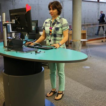 Mona Vale Library staff working at a comfortable standing height on YAKETY YAK Classic Oval's ergonomic worktop.